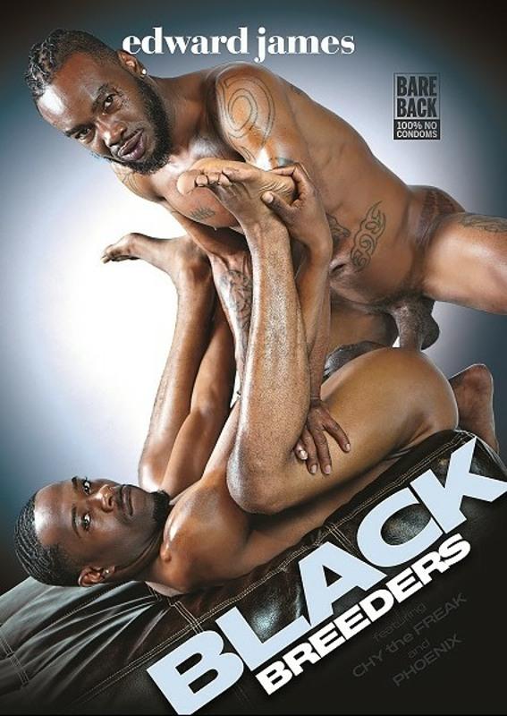 Black Breeders  Image