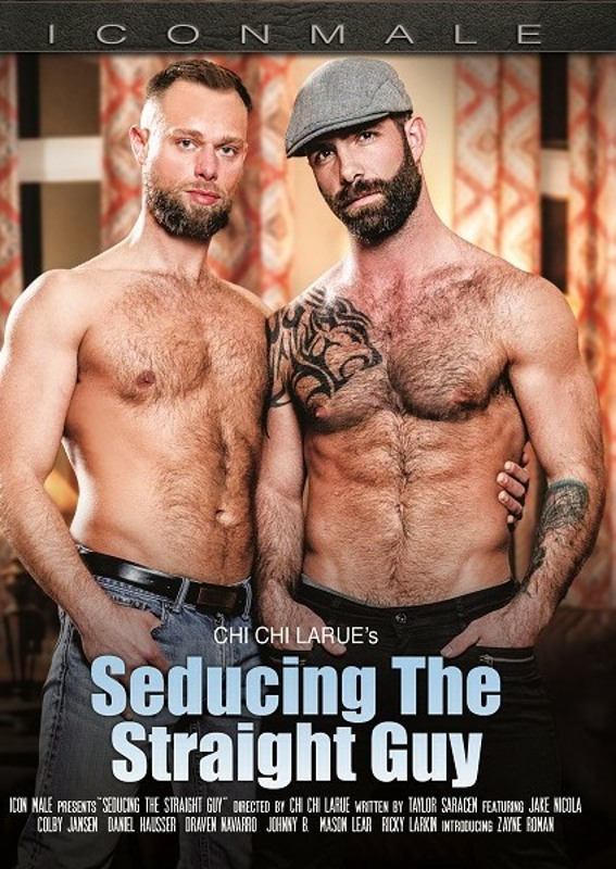 Seducing The Straight Guy  Image